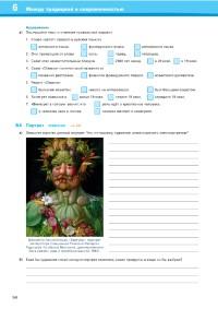 Probeseiten Probeseite-55_527572.pdf