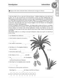 Probeseiten 21002_probeseite2.pdf