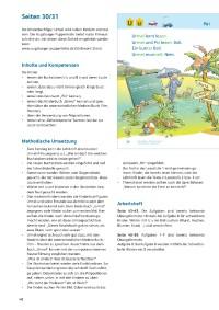 Probeseiten Probeseite_1_300550.pdf