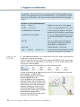 Probeseiten Lambacher Schweizer 10 Schülerbuch Sachsen Seite 176_734101