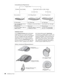 Probeseiten Probes.2_A01514_0455310120