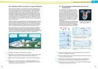 Probeseiten 150054-probe-3.pdf