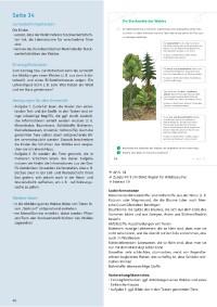 Probeseiten 310614_probeseite_1.pdf