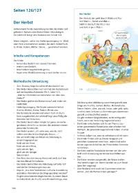 Probeseiten Probeseite_2_300550.pdf