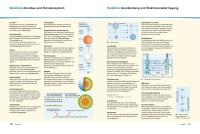 Probeseiten Elemente1C_VIII_IX